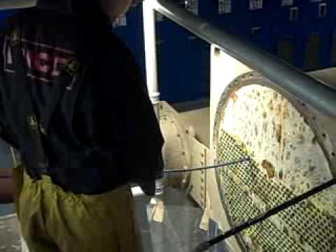 Man Checking Machine With Tube