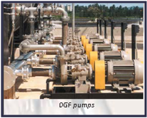 DGF Pumps
